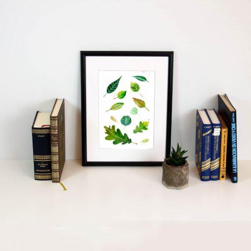 Lamina ilustración botánica