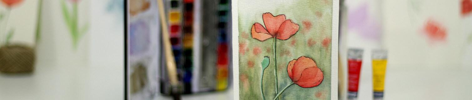 dibujo y pintura de amapolas en acuarela